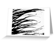 Black and White Everglades Grass.. retouched  Greeting Card