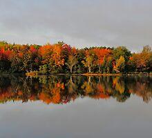 Autumn Beauty by Kathleen   Sartoris