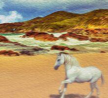 Heaven is a horse. by john NORRIS