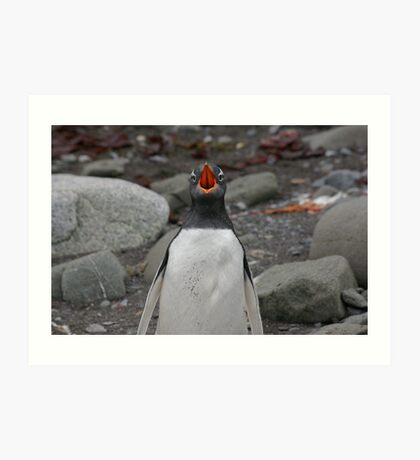 Penguin Opera Art Print