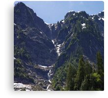 Avalanche Circle Of Trees  Canvas Print