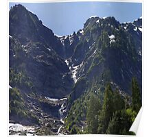 Avalanche Circle Of Trees  Poster