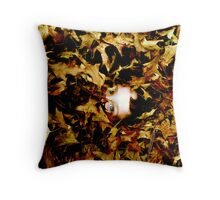 Gilded Throw Pillow