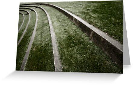The Curve by Dan Jesperson