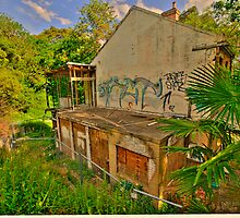 Fixer Upper -  Ross Cottage c1898 Waverton , NSW - The HDR Series by Philip Johnson