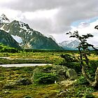 Patagonian Landscape by Alessandro Pinto
