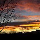 Colorado Winter Sunset by Fareday