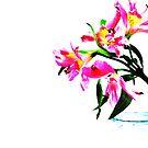 A Twist Of Pink by Gretchen Dunham