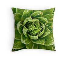 Cactus Hypnosis Throw Pillow