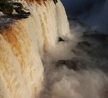 Iguazu Portrait by Amanda Yee