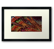 Night Bazaar Framed Print
