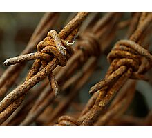 Barbed wire macro Photographic Print