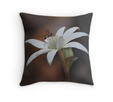 Flannel Flower and Fly #2 Throw Pillow