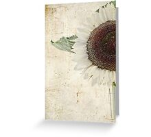 Sunny Albino Sunflower Greeting Card