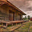 Last Train .... all change by Di Jenkins