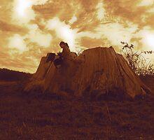 Big Old Tree Stump...Eucalyptus Tree Tasmania by cradlemountain