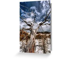 silver ghost Greeting Card