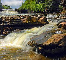 Aysgarth Falls - Yorkshire by eddiej