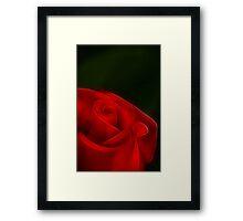 Romancing the Rose Framed Print