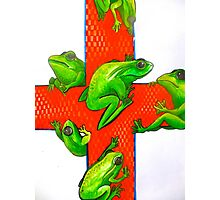 save the frogs red cross Photographic Print