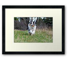 Mellie Framed Print
