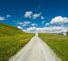Mountain road on wide open green meadow by peterwey