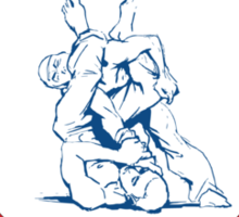 Armbar & Choker BJJ Sticker