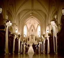 Down the Aisle by Hilary Walker
