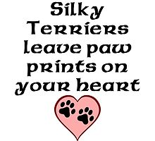 Silky Terriers Leave Paw Prints On Your Heart by kwg2200