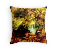 Ttv: Well Hello There Throw Pillow
