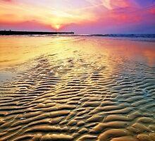 Walberswick Beach Suffolk 7. by Wayne Bradshaw