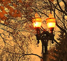 Street Lights in Kitchener by Anatoliy