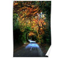 Through the Autumn Poster