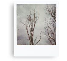 { silent skeletons } Canvas Print