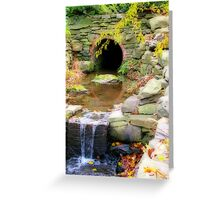 Fall at the Arboretum Greeting Card