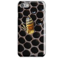 """A page from my book """"What do honeybees do?"""" Worker bee cleaning out a honeycomb cell. iPhone Case/Skin"""