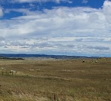 High Country Pano by D-GaP