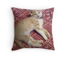 Wild Bill Hickock Kitten says he KNOWS He is cute Throw Pillow