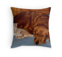 Wild Bill Hickock Kitten and Penelope sharing the doggie bed Throw Pillow