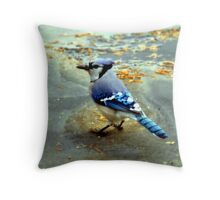 Profile Of A Seed Thief Throw Pillow