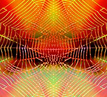 Spider Web Magic by Virginia Maguire