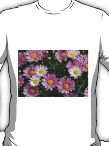 pink daisy T-Shirt