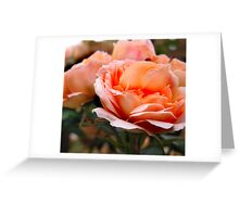 Peach Layers Greeting Card