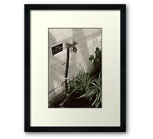 In the greehouse Framed Print