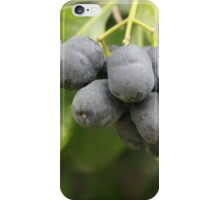 I've Got a Lovely Bunch of... iPhone Case/Skin