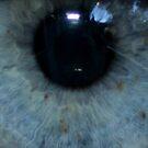 Eye eye eye! by Jessica Millman