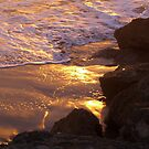 Glistening by Cheryl  Lunde