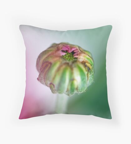 New Daisy Bud Throw Pillow