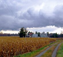 Storm Coming In by marchello
