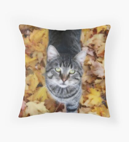 Louie Throw Pillow